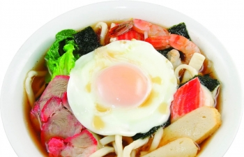 Japanese Udon Noodle